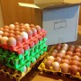 Shop display Box of eggs